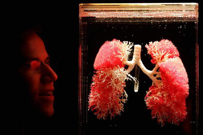 Exibição de pulmões em Londres