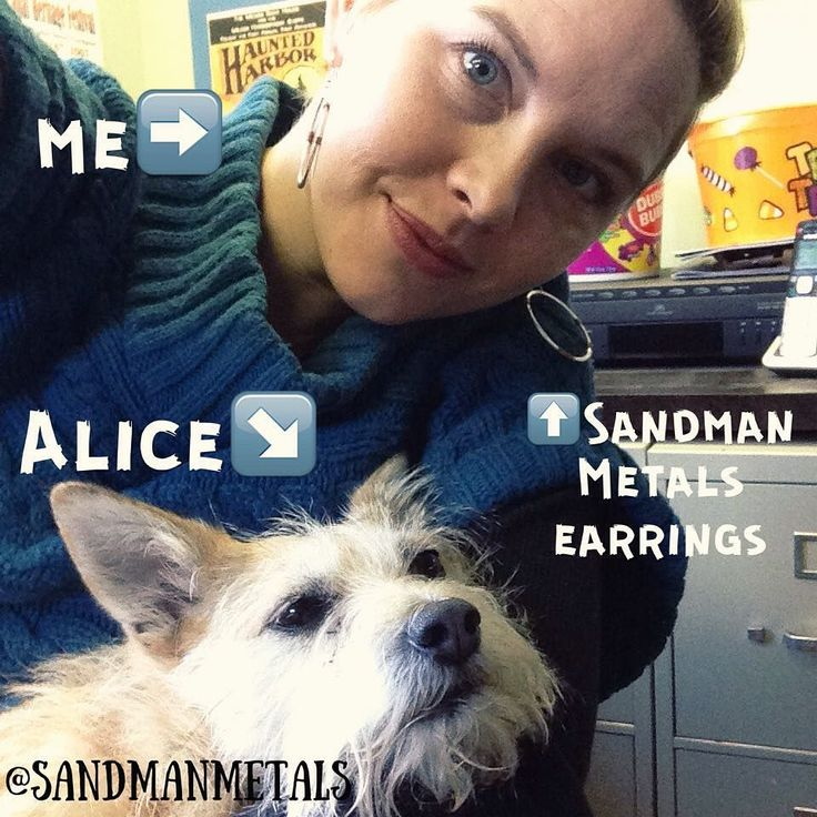 Alice you can't stay here forever- my arms falling asleep. #ilovedogs #dogperson #SandmanMetals