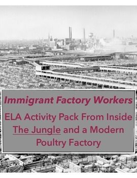 Controversial essays on immigration