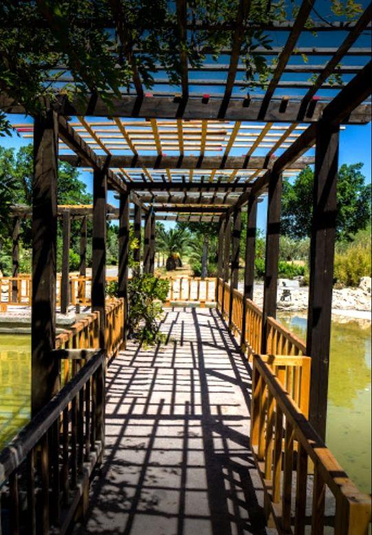 Tunisie côté mer - Le Jardin Japonais de Tunis. (Photo MW Boukari ...