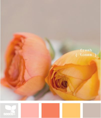fresh tones: Color Palettes, Warm Colors, Design Seeds, Color Combos, Color Schemes, Pretty Color, Colour Palettes