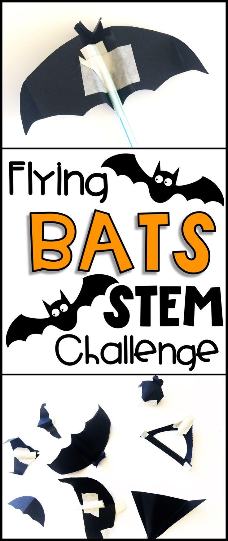 60 best My TPT stuff images on Pinterest   Biowissenschaft ...