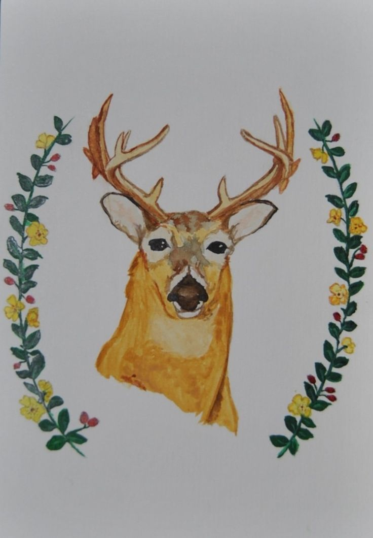 """""""Oh Deer!"""""""