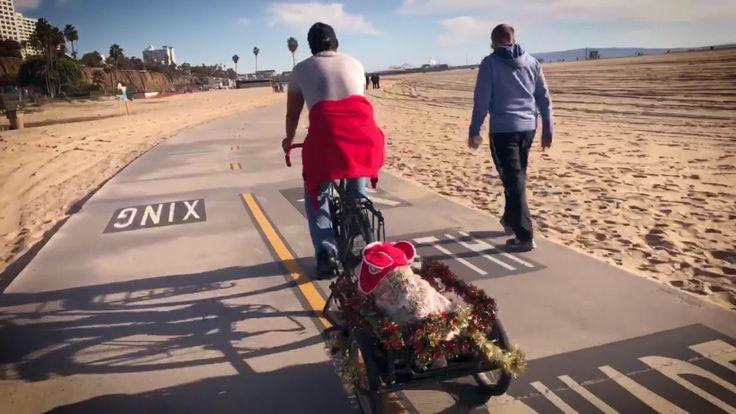 TBT Christmas Dog Ride 2016