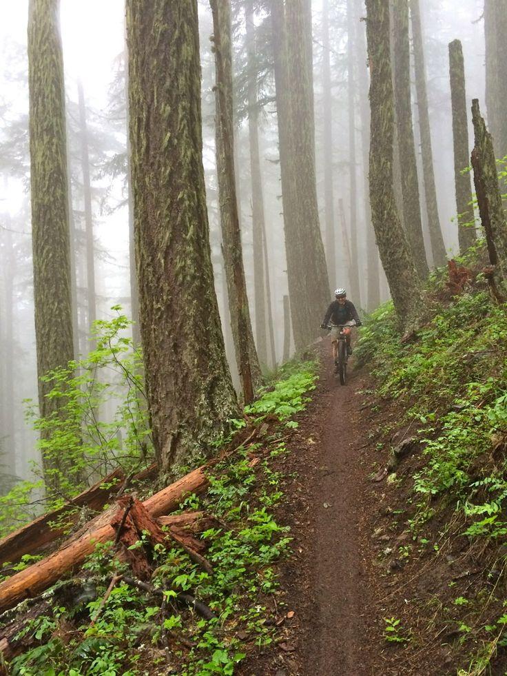 17K in a Day–Adventures in Oakridge, Oregon   Singletracks Mountain Bike News