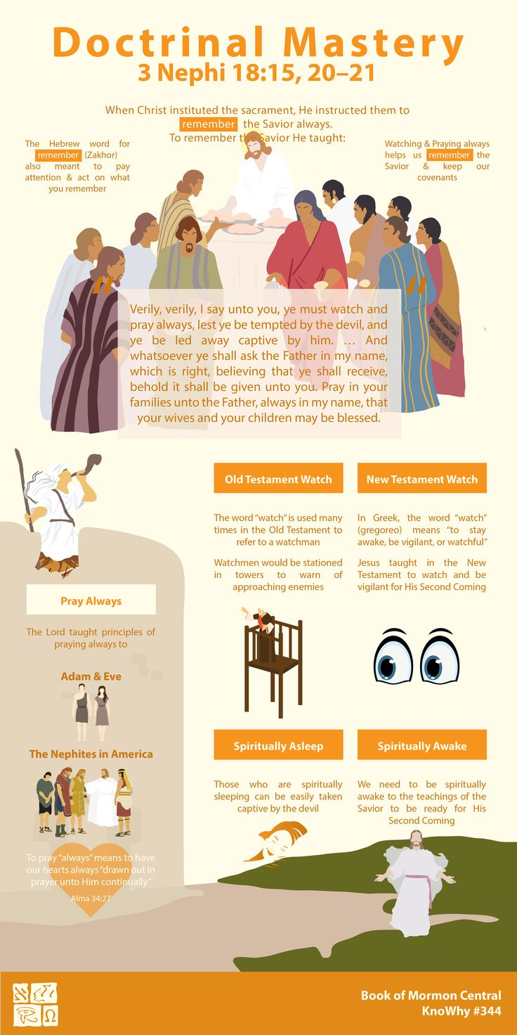 Pin On Lds Doctrinal Mastery Infographics