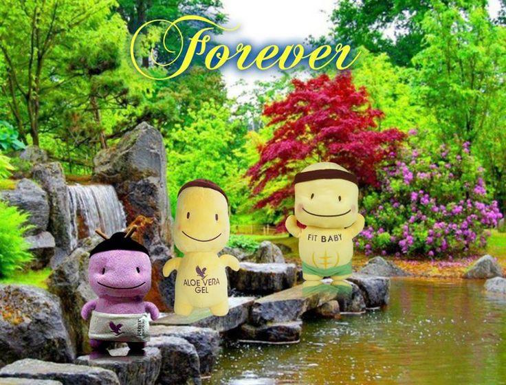 #foreverfit #eletmodvaltas #egeszseg #kondi #fitnesz #foreverlifestyle #follow #succes https://www.facebook.com/aloemarketing/