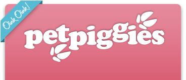 Micro Pigs : Micro Pigs For Sale : Mini Pigs : Micro Pig Services