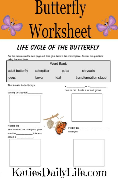 free butterfly life cycle worksheet part of 30 days of free printables daily life. Black Bedroom Furniture Sets. Home Design Ideas