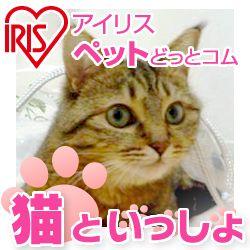 猫用語辞典