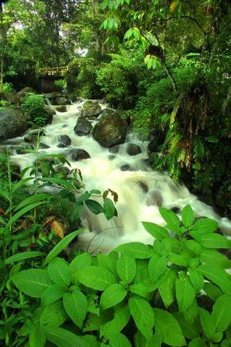 River View on Pondok Halimun, Sukabumi west java by Ikung Adiwar