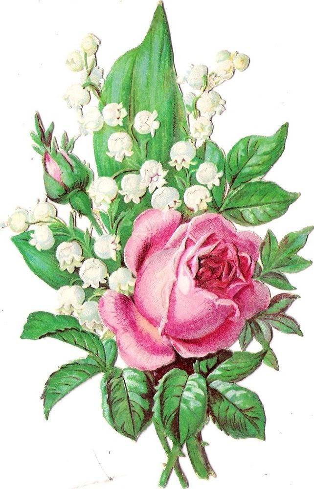 Oblaten Glanzbild scrap die cut chromo  Rose 13,8 cm  Blume flower
