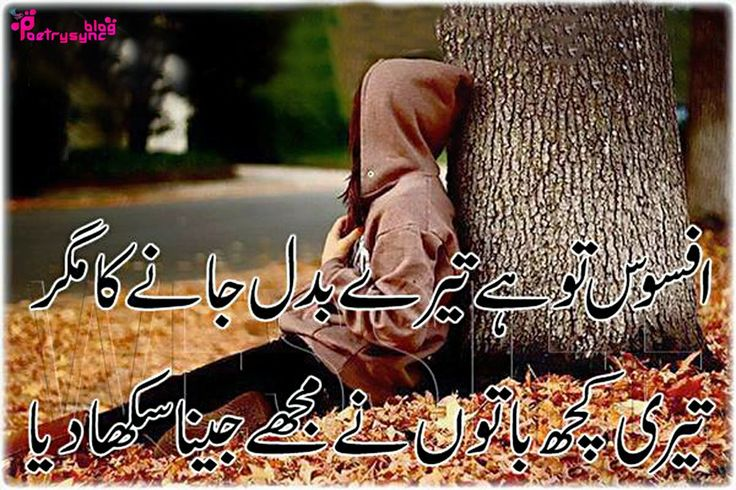 1000 Images About Urdu Shairy On Pinterest Facebook