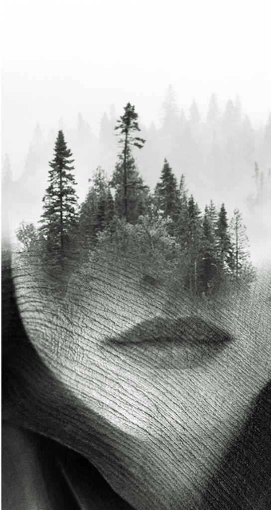 forbidden wood by antoniomora