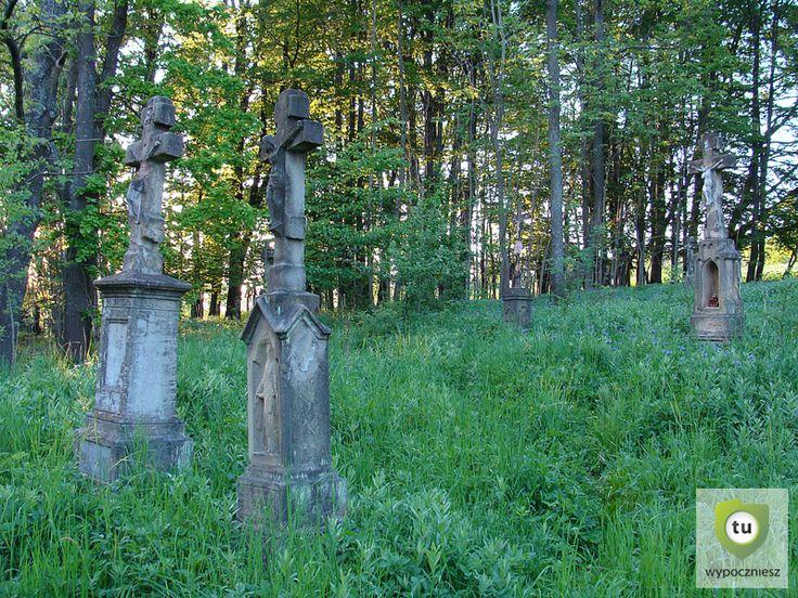 Przed II wojną światową wszystkie one były zamieszkane przez Łemków.