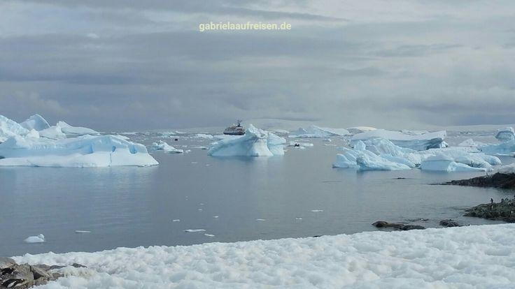 Sea Spirit in Antarctica with icebergs. http://travelblog.gabrielaaufreisen.de/3-islands-in-antarctica-cierva-cove-mikkelsen-harbour-and-spert-island/ #gabrielaaufreisen #antarctica #antarktis