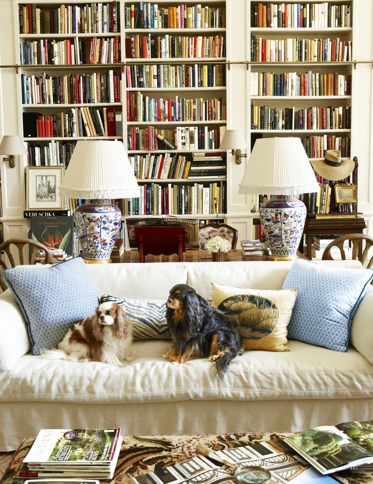 Another well-lit room, full of books. Doesn't hurt to also have two puppies present. So many things I love here: Books, Light, Pups, damask-y-upholstery, matching lamps, ahhh.