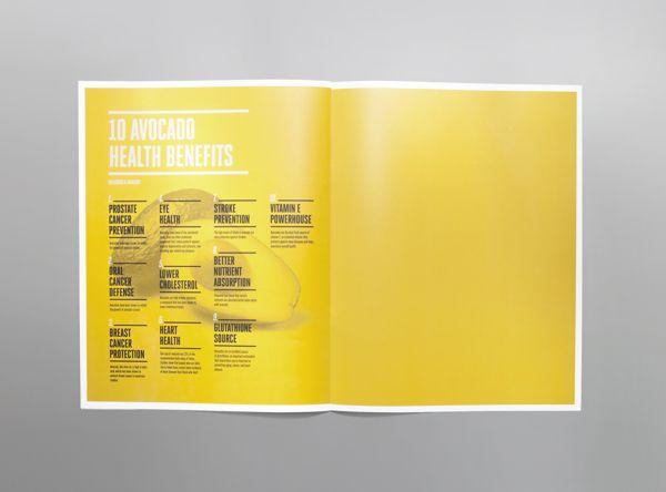 Brochure / Avocado Zapotlan Brochure