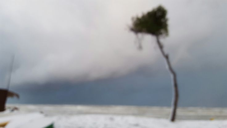 #snow #sea #Pineto