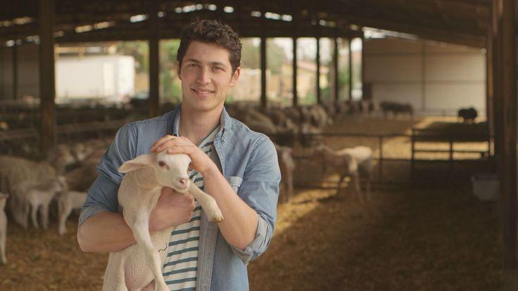 Giuseppe, 27 anni, pastore (Lazio). Giuseppe lavora nell'azienda agricola di famiglia, fondata dal nonno e ampliata dal padre. Possiedono 700 ovini da latte, bovini da carne e un agriturismo campestre. La sua giornata si divide tra...