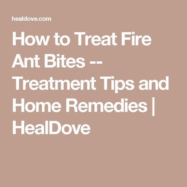How to Treat Fire Ant Bites -- Treatment Tips and Home Remedies | HealDove