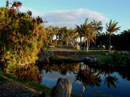 http://www.webtenerife.co.uk/what-see/gardens-and-parks/palmetum.htm Palmetum. Un vertedero de basura transformado en un jardín botánico y espacio de ocio en Santa Cruz de Tenerife // From a rubbish tip into a garden Eden, an area for leisure in Tenerife, Canary Islands. // Von einer Müllhalde zu einem Garten Eden und Gelände für Freizeitaktivitäten in Teneriffa, Kanarische Inseln.