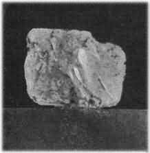 The Eureka Stone-It is not known if van Niekerk new he was selling a diamond, but O'Reilly certainly knew he was buying one.  He showed the stone to several gem-dealers in Hopetown who said it was not a diamond but a 'topaz' and had no value.  O'Reilly took the stone to Grahamstown where he showed it to geologist Dr. William Guybon Atherstone for his expert opinion.  It was Dr. Atherstone who identified this as the first diamond to be found in South Africa and told O'Reilly it was worth…