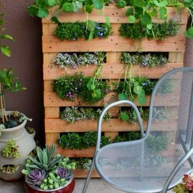 Love the pallet idea