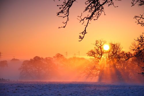 Sunrise_golden_hour.png (500×334)
