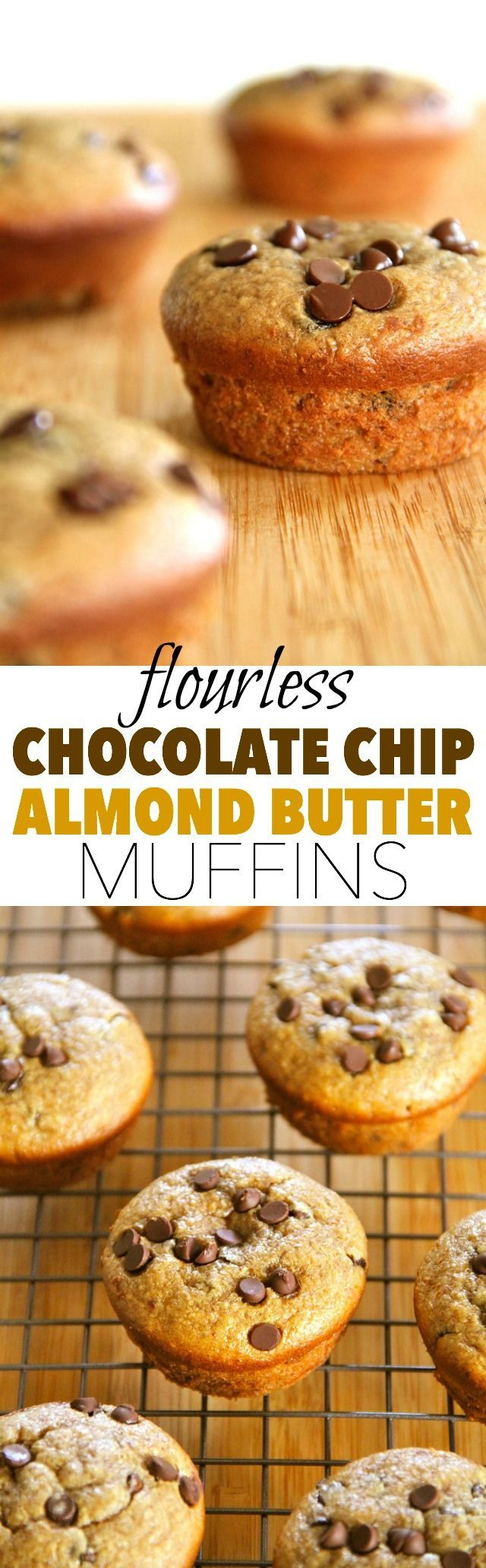 Flourless Chocolate Chip Almond Butter Muffins -- gluten-free, sugar-free, dairy-free, and oil-free, but so soft and fluffy that you'd never know they were healthy! || runningwithspoons.com #muffins #flourless #healthy
