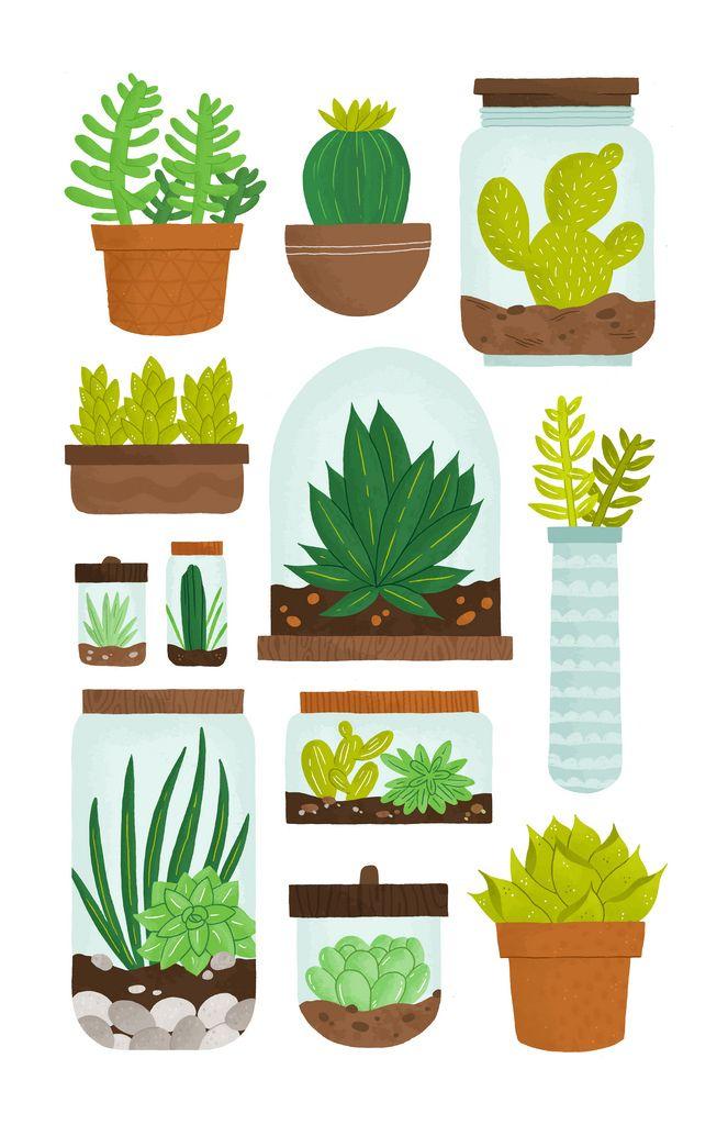 succulent terrariums...illustrated :): Alyssa Nassner, Cactus Plants, Cacti, Terrariums, Small Talk, Illustration, Art Prints, Succulent Terrarium, Terrarium Ideas