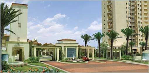 4BHK Apartment For Rent In Emaar MGF Palm Springs,Gurgaon - 4 Bedroom / BHK Apartment For Rent In DLF Golf Course Road Gurgaon - Click.in