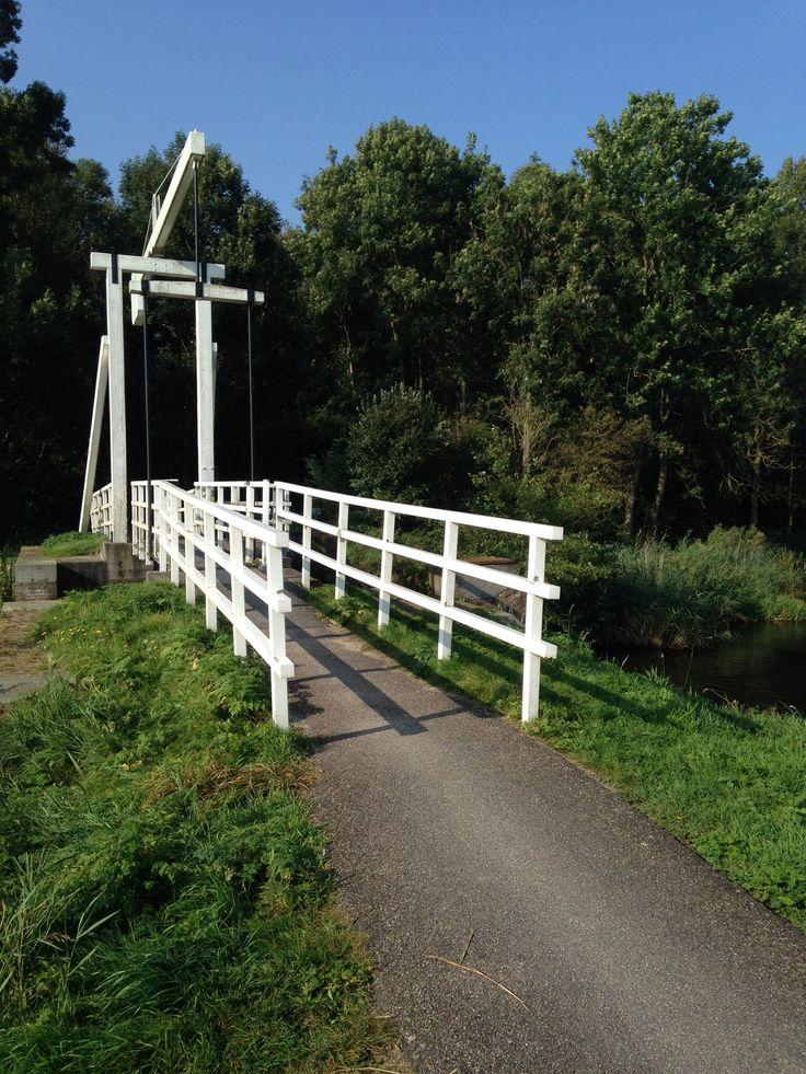 Weerribben Wieden  nabij Driewegsluis