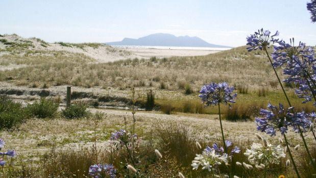 Pakiri Beach.