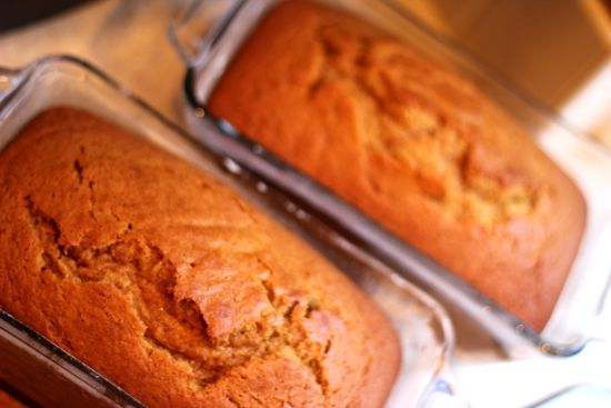 I've been making this pumpkin bread for several years and it's one of the easiest, tastiest things in my regular fall/winter rotation. It puts Starbucks' pumpkin loaf to shame, and that's saying a lot, because I love Starbucks' pumpkin loaf.