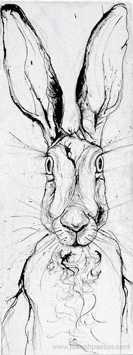 'Hare Head' | Joseph Paxton
