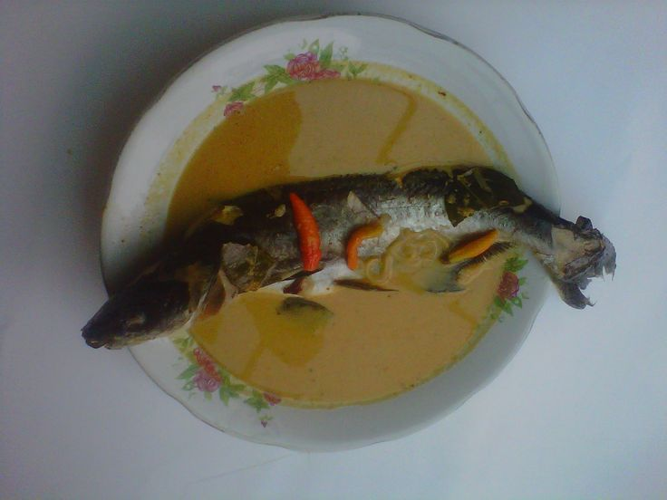 Kari patin (Pangasius fish curry)
