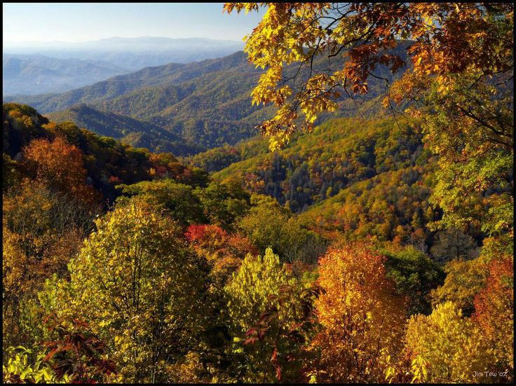 enter here http://earth66.com/autumn/appalachian-autumn/