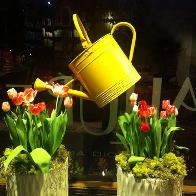 Spring window display at Allure Hair and Spa, London, Ont :)
