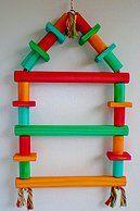 Poleiro Escada para Araras, Papagaios, Ring Necks, Roselas, Forpus e outros psitacídeos de grande porte