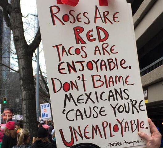... POSTERS from the Women's March on Washington. - DumpTrumpDumpTrump.com