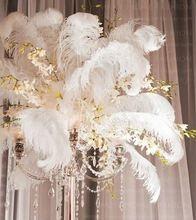 100 pcs/lot 8 - 10 дюймов / 20 - 25 см оранжевый страус перья плюм свадьба центральным своими руками стол декор свадьба ну вечеринку декор(China (Mainland))