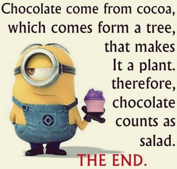 1000 Chocolate Quotes On Pinterest: 1000+ Ideas About Chocolate Humor On Pinterest