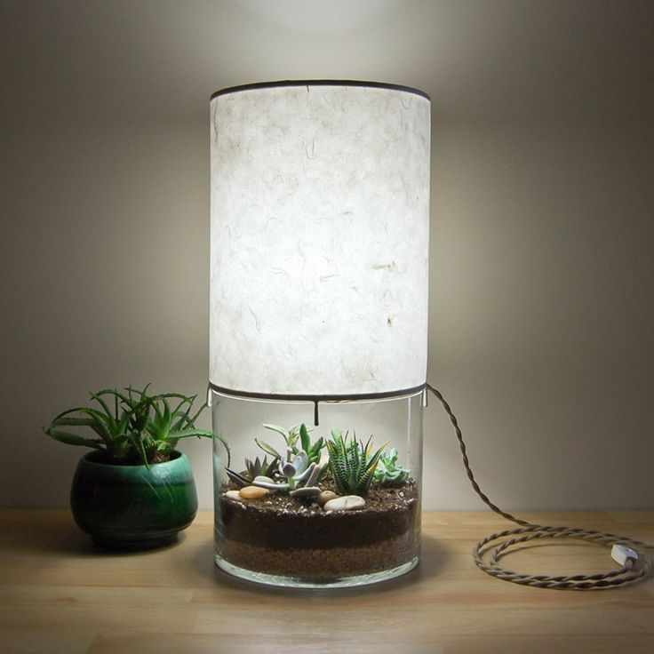 Unique lamp with a large clear glass base that can be used as a terrarium or display case for various odds and ends and topped with a handmade kozo paper lampshade.