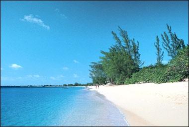 Grand Cayman. ❤