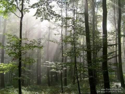 Der Freischütz--Huntsmen's Chorus (+playlist)