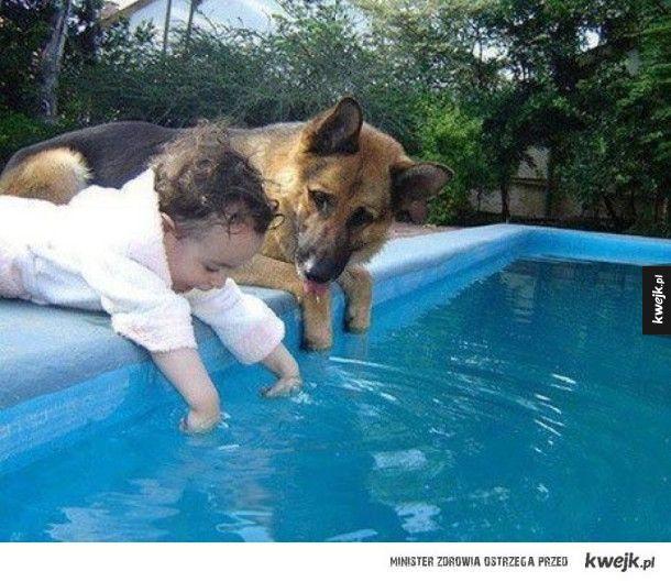 Psy to najlepsze opiekunki do dzieci