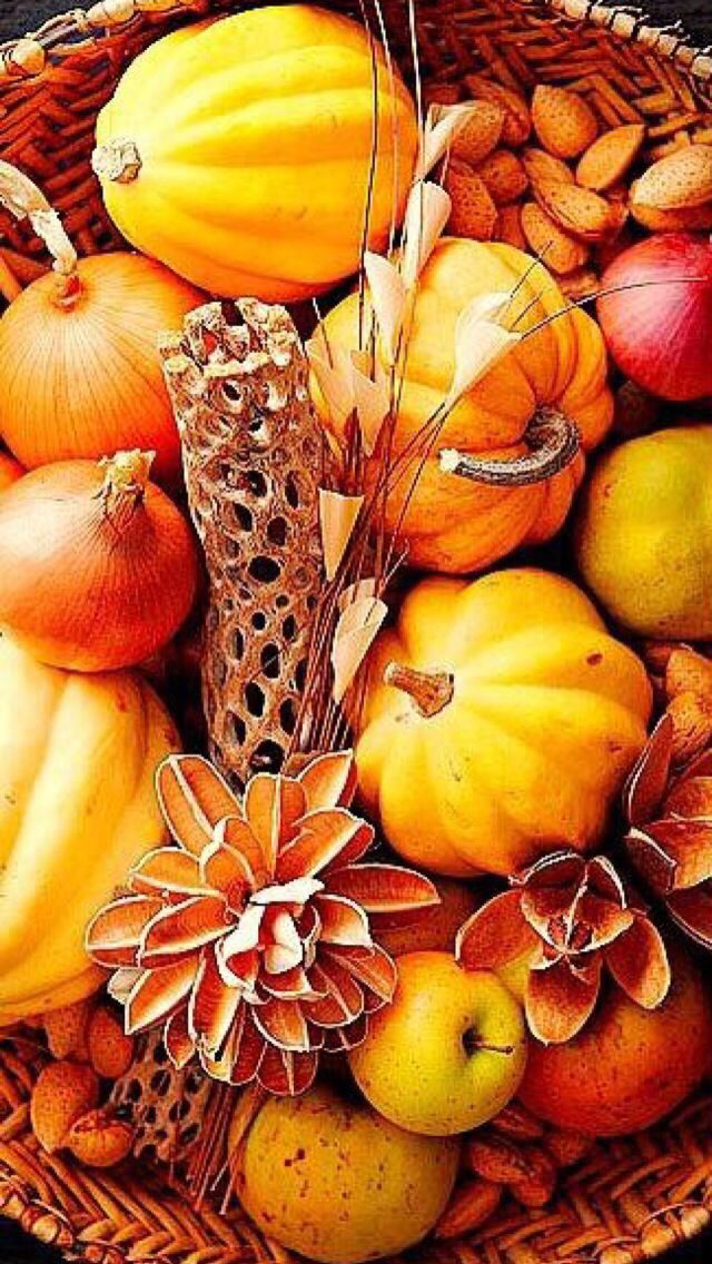 iPhone Wallpaper Thanksgiving tjn Fall harvest, Fall