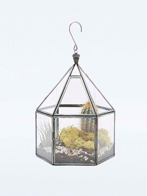 Hangend Terrarium | ELLE