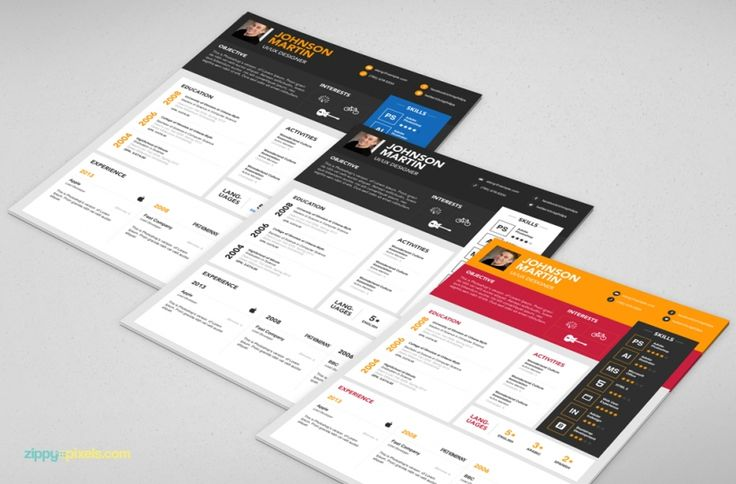 graphic designer resume template psd ai zippypixels design